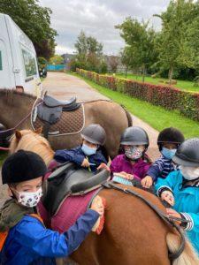 De l'équitation à l'accueil de loisirs